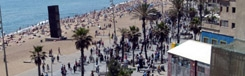 Barceloneta: van visserswijk tot toeristisch strandparadijs