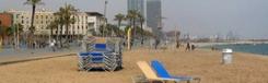 Barceloneta: vis en strand