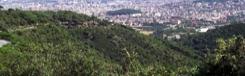 Collserola: wandelen door de groene long van Barcelona