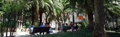 Parc Can Castelló